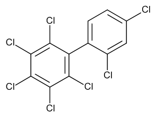 PCB No. 181 10 µg/mL in Isooctane