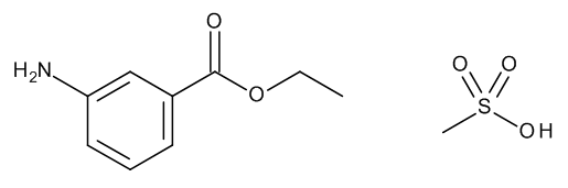 Tricaine Methanesulfonate