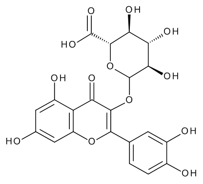Quercetin 3-O-Beta-D-Glucuronide