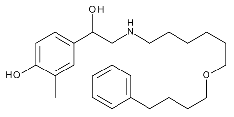 3-De(hydroxymethyl)-3-methyl Salmeterol
